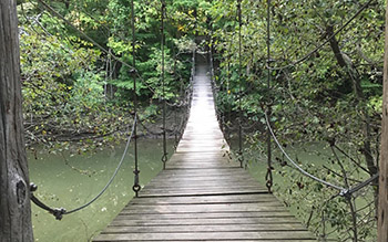 Bluffton University Swinging Bridge
