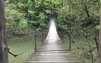 Bluffton University Swinging Bridge