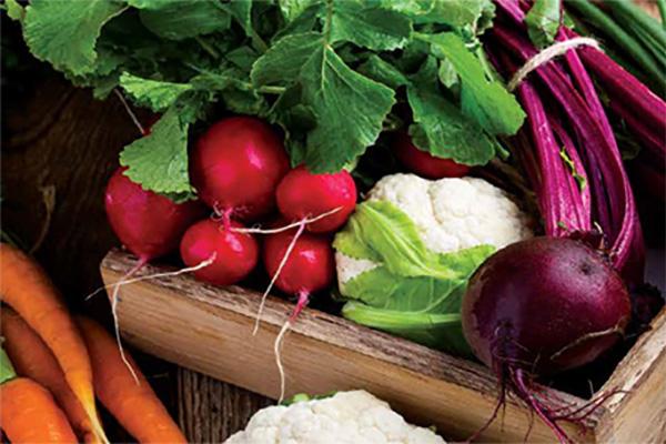 Farm to Table Harvest Dinner